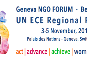 President Joanna Manganara evaluates the UN ECE NGO Forum